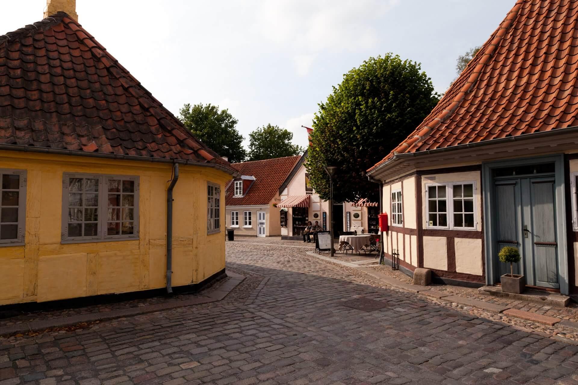 Odense by (Foto: Kim Wyon)