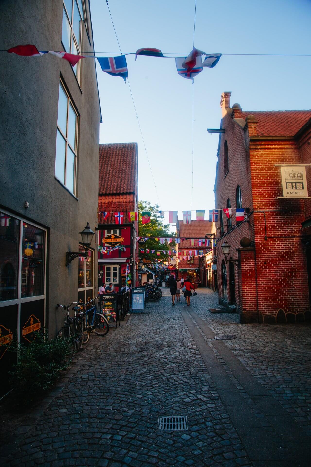 Odense by (Foto: Michael Fiukowski)